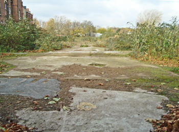 wasteland at Dulwich Community Hospital